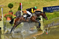 The Festival of British Eventing 2016 (principally)